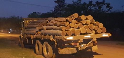 La carga quedó a disposición del Ministerio Público.