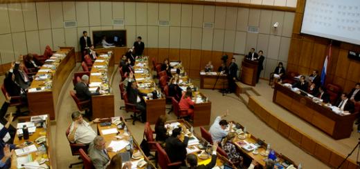 La solicitud fue propuesta por la Senadora Blanca Ovelar y aprobada por el pleno