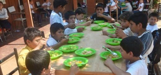 los-alumnos-de-la-escuela-basica-n-4978-san-miguel-de-calle-primavera-fueron-beneficiados-con-el-almuerzo-escolar-_915_573_1407269