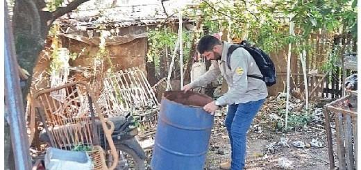 Contra el dengue. La eliminación de criaderos es clave.