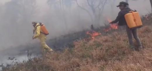 Con gran precariedad, bomberos luchan contra el fuego.