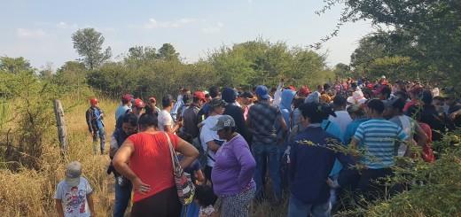 Más de 500 personas ingresaron al predio